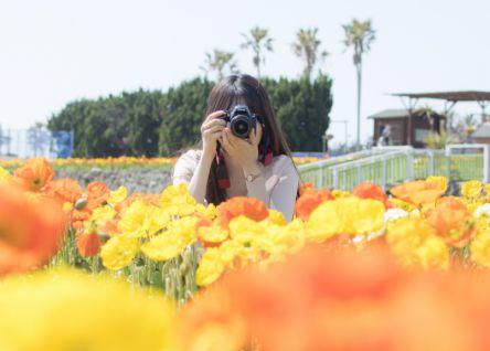 【フォトジェニックなカメラ女子旅】初心者でも理想の写真が撮れる!一眼レフでおでかけ撮影テク7