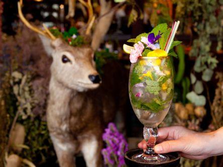 色とりどりの花スイーツにうっとり。秘密基地みたいな京都の隠れ家カフェ