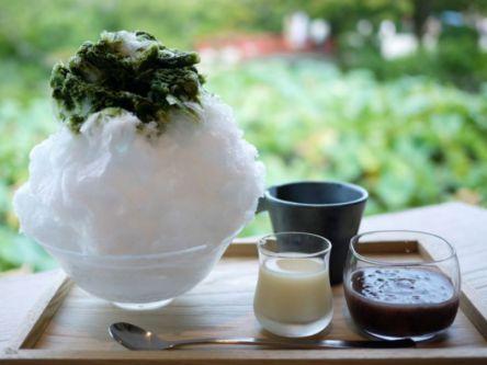 【目的別】夏の鎌倉を満喫!絶対行くべきおすすめ観光スポット12選