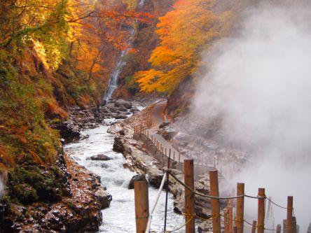 秋田県でおすすめの紅葉名所~見頃や紅葉祭りなどの2020年情報~