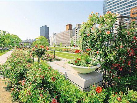 今が見ごろのバラがお出迎え!大阪・中之島~堀江の多彩な専門店めぐり