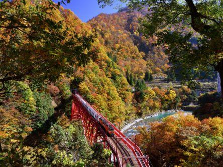 富山県でおすすめの紅葉名所~見頃などの2020年情報~