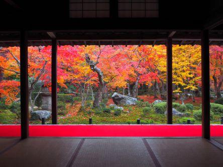 京都「洛北・大原・貴船」のおすすめ紅葉名所2020~詩仙堂・三千院など~