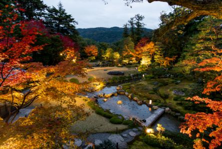 京都の紅葉がBARに変わる!? 3日間限りの夜の庭園パーティ