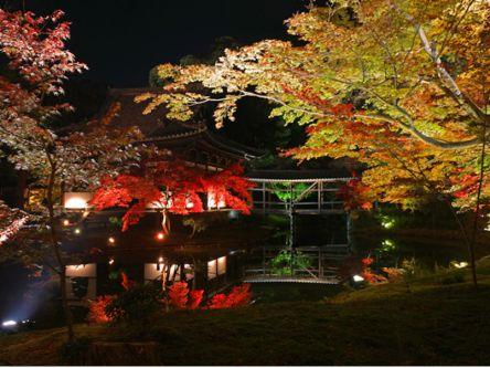 深まる秋をライトアップで楽しむ!京都・祇園の夜遊びデートプラン