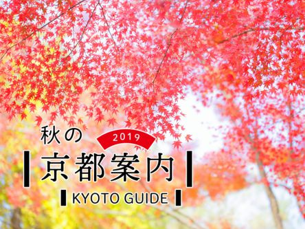 秋の京都案内2019