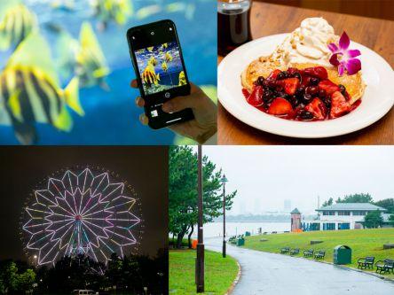 葛西臨海公園でデート!グルメから夜景までおすすめプランを紹介!