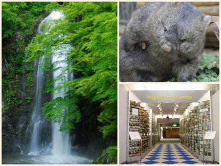 入場料0円で楽しめる!次の3連休に行きたい大阪のおすすめスポット4選