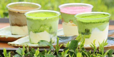 京都の旬をお取り寄せ!新茶の香る「濃厚茶葉の新茶ティラミス食べ比べセット」
