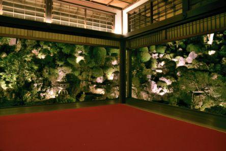 おうちで観光気分!柳谷観音 楊谷寺の新緑ライトアップとあじさいを楽しむ