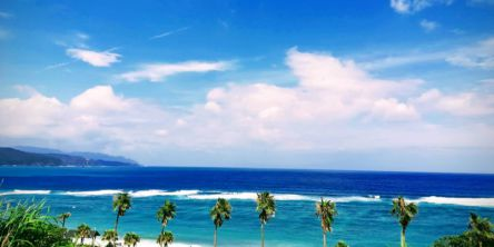 爽快ドライブへ! 鹿児島湾と奄美大島をぐるーっと一周、絶景&冷たいスイーツめぐり