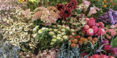お部屋に秋を取り入れて。季節の花が豊富な都内のフラワーショップ4選