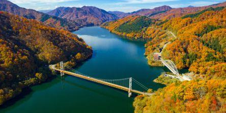福井県でおすすめの紅葉名所~見頃やライトアップなどの2020年情報~