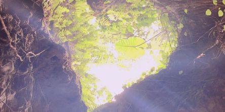 【Go To トラベル対象】沖縄「ココ ガーデンリゾート オキナワ」で隠れた人気パワースポットを体験できるおすすめ宿泊プラン!