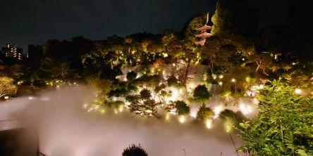 ホテル椿山荘東京の「東京雲海」とは?景色とリンクしたフレンチコースも実食レポート!
