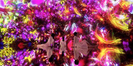 幻想的な世界へ!「チームラボプラネッツ」に1000万本を超える花々が咲き渡る、新たな仕掛けが登場