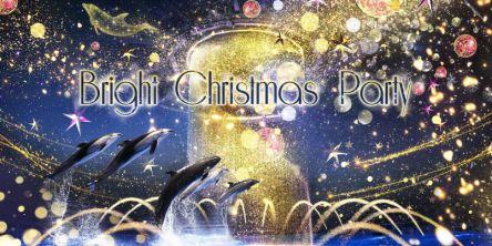水族館のクリスマス限定プログラム!イルカたちが星空の海で繰り広げる華やかなパーティー