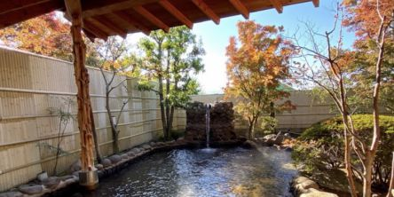 紅葉×温泉の無敵タッグを都内から日帰りで楽しめるスポット3選