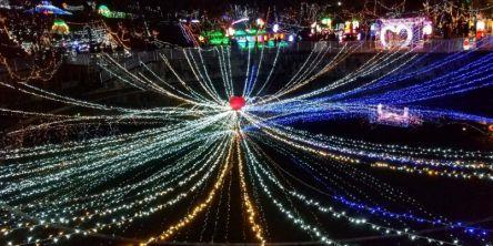 京都府のおすすめイルミネーション(2020-2021)クリスマスや冬デートに!