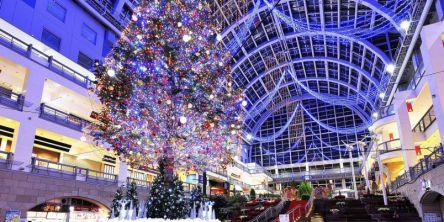 札幌のおすすめイルミネーション(2020-2021)クリスマスや冬デートに!