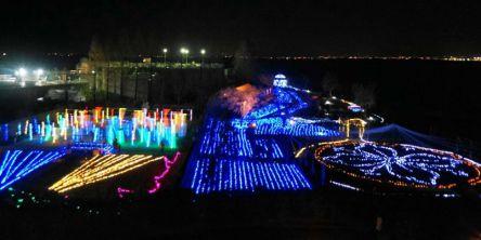 滋賀県のおすすめイルミネーション(2020-2021)クリスマスや冬デートに!