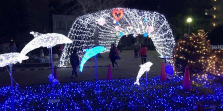 奈良県のおすすめイルミネーション(2020-2021)クリスマスや冬デートに!