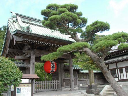 鎌倉のおすすめ初詣スポット、2021年の初詣行事やご利益は?