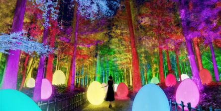 【開催期間変更】「チームラボ 偕楽園 光の祭」水戸で3月1日から開催!梅が3000本咲き競う日本三名園へ