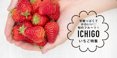 甘酸っぱくてかわいい旬のフルーツ!いちご特集