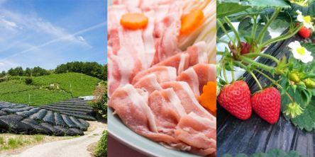 旬の食材を、生産者直送! 旅のプロが厳選するネット通販サイト『るるぶの産直』第2弾は、京都から宇治抹茶、いちご、豚、九条ねぎなど!
