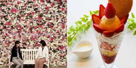 いちごパフェ&名画鑑賞♪「大塚国際美術館」で楽しむ春のアート