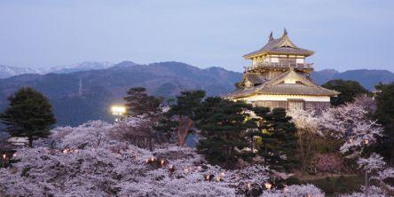 福井県のお花見・桜の名所(2021)夜桜・ライトアップや桜祭りも