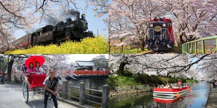 乗り物から桜名所のお花見を!SL、遊覧船、ロープウェイ、馬車など
