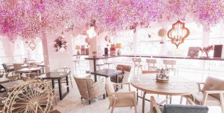 代々木公園カフェ「TREE by NAKED yoyogi park」で桜満開旅気分&春メニュースタート