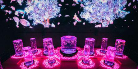 アートアクアリウム美術館に春到来!特別企画「桜金魚 舞い泳ぐ」や限定桜メニューをチェック