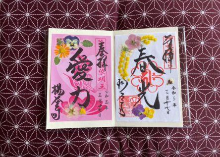 春の京都・長岡京市で限定御朱印・御城印を集めよう