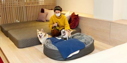 「星野リゾート リゾナーレ八ヶ岳」で愛犬とワンダフルTRIP!【宿泊体験レポ】