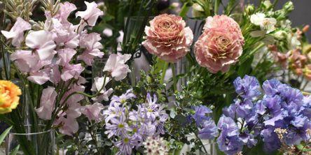 NEWoMan新宿のお花屋さん「ew.note」はサスティナブルに取り組むショップ!ドライフラワーも
