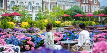 ハウステンボスで「あじさい祭り」開催!異国情緒溢れる空間を日本最多の1250品種で彩る