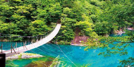 大自然が残る大井川鐡道沿線を観光!隠れた絶景を目指す、静岡日帰りプラン