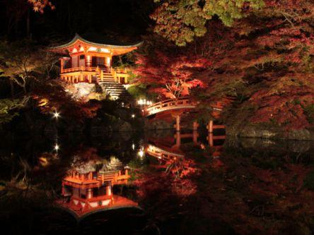 京都で紅葉ライトアップや夜間特別拝観がおすすめの名所2020