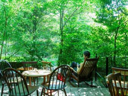 テラスの奥は鎮守の森!「伏見稲荷大社」帰りに寄りたい絶景カフェ