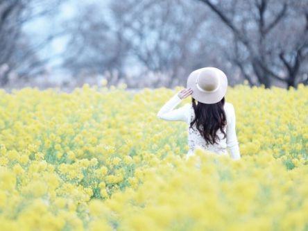 冬の琵琶湖一周。滋賀の有名スポット巡り【Masaの関西カメラさんぽ18】