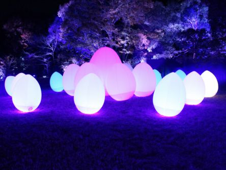 幻想的な光と音のアート空間!メッツァビレッジ「チームラボ 森と湖の光の祭」体験レポ
