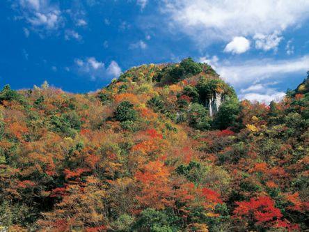 三重県でおすすめの紅葉名所~見頃やライトアップなどの2020年情報~