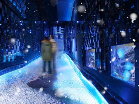 冬は「雪」、春は「桜」すみだ水族館 フォトジェニックなアートイベント