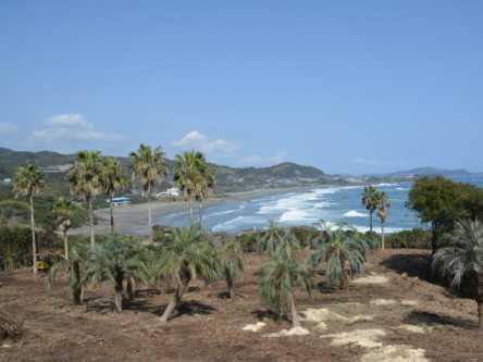 宮崎県のおすすめビーチ・海水浴場、2020年度の開催・中止は?
