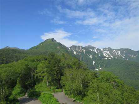 超人気スポット旭山動物園から絶景の層雲峡まで!癒しの北海道プラン