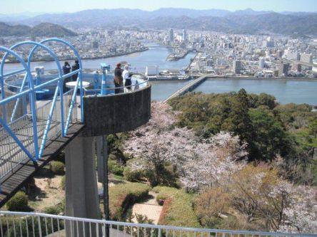 高知県のお花見・桜の名所(2021)夜桜・ライトアップや桜祭りも