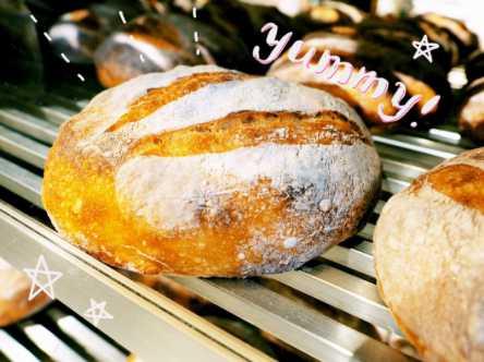 しっとりモチモチのパンがクセになる!自由が丘で出合う「ブール」の食感にもう夢中!